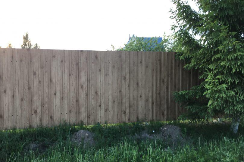 Забор из профнастала под дерево, Фото, №4